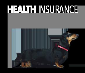 Health Insurance Stanley